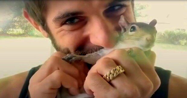 Screenshot: YouTube / The Dodo