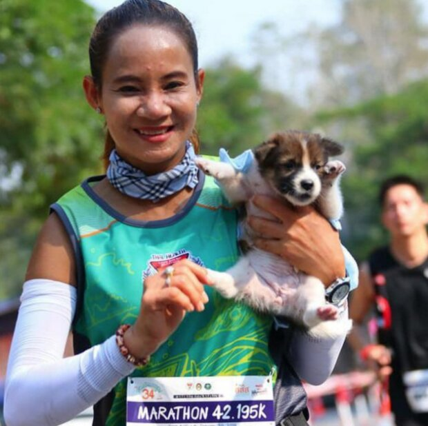 Foto: laykni.com