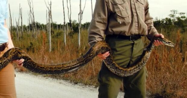 Screenshot: YouTube / National Geographic