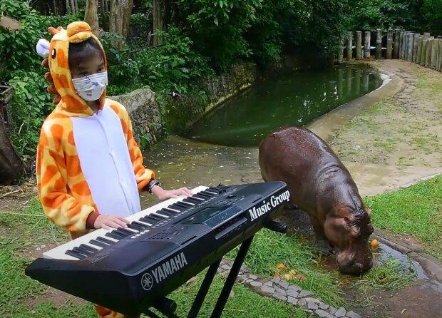 Screenshot: YouTube / Khao Kheow Open Zoo